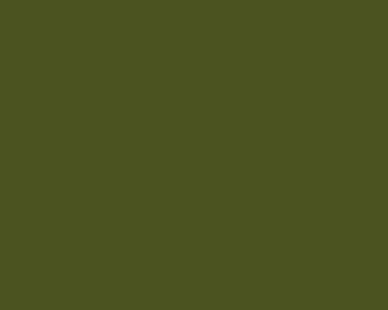 X Army Green Solid Color Background
