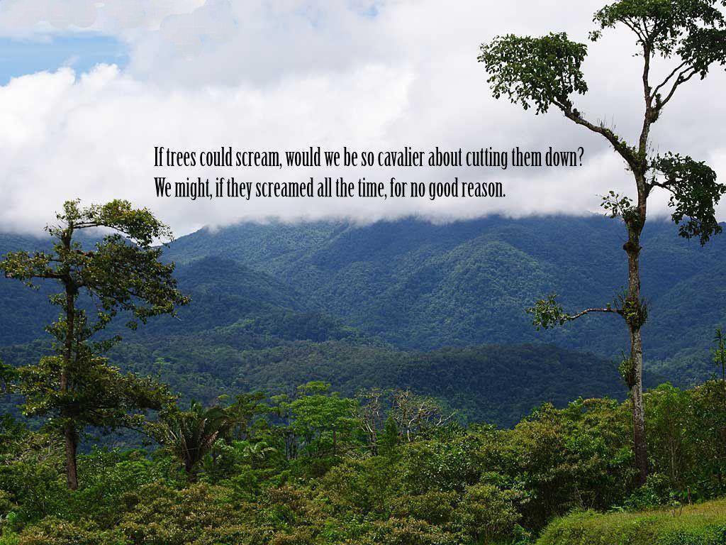 nature quotes wallpapers