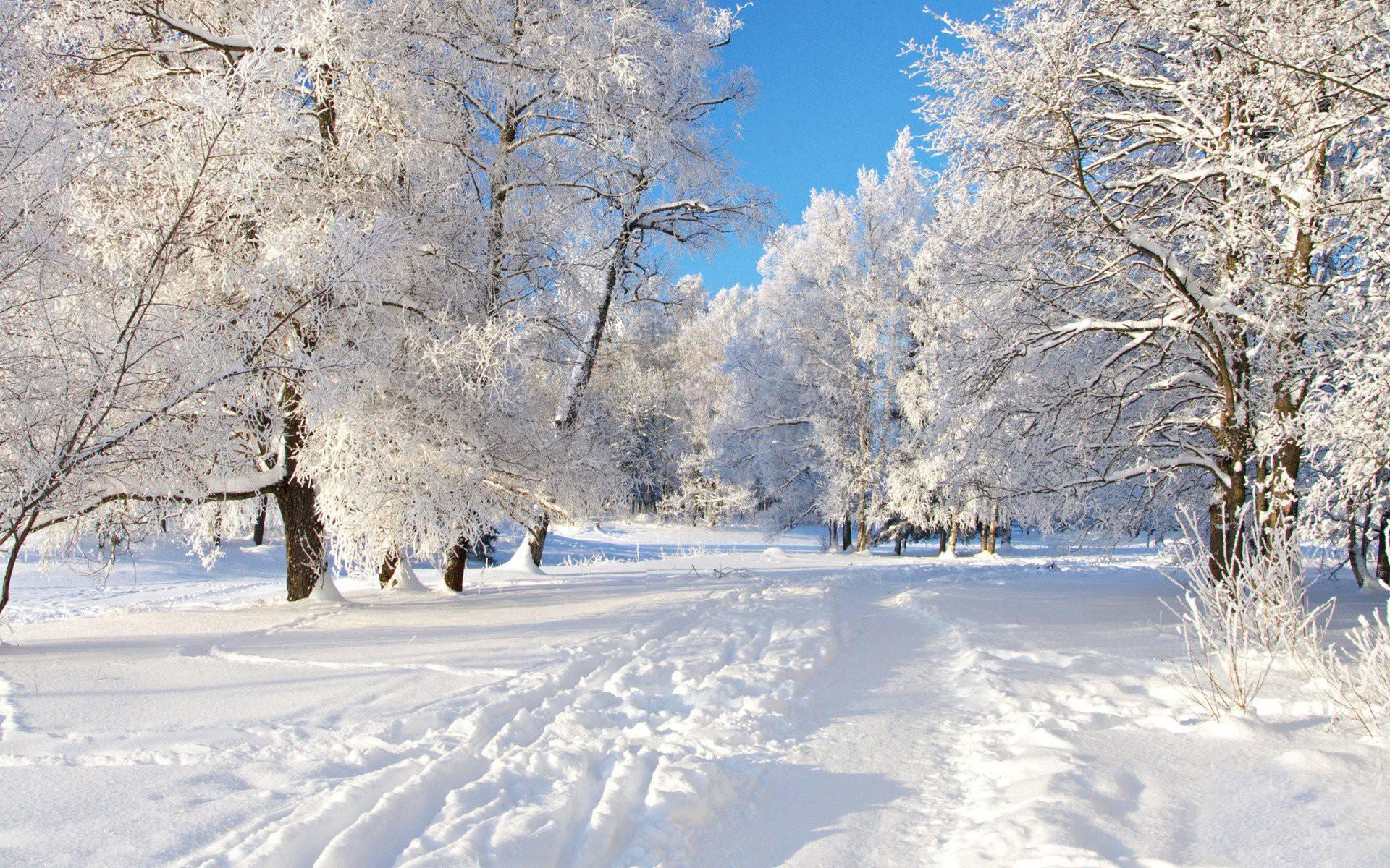 free winter desktop wallpaper download winter wallpapers