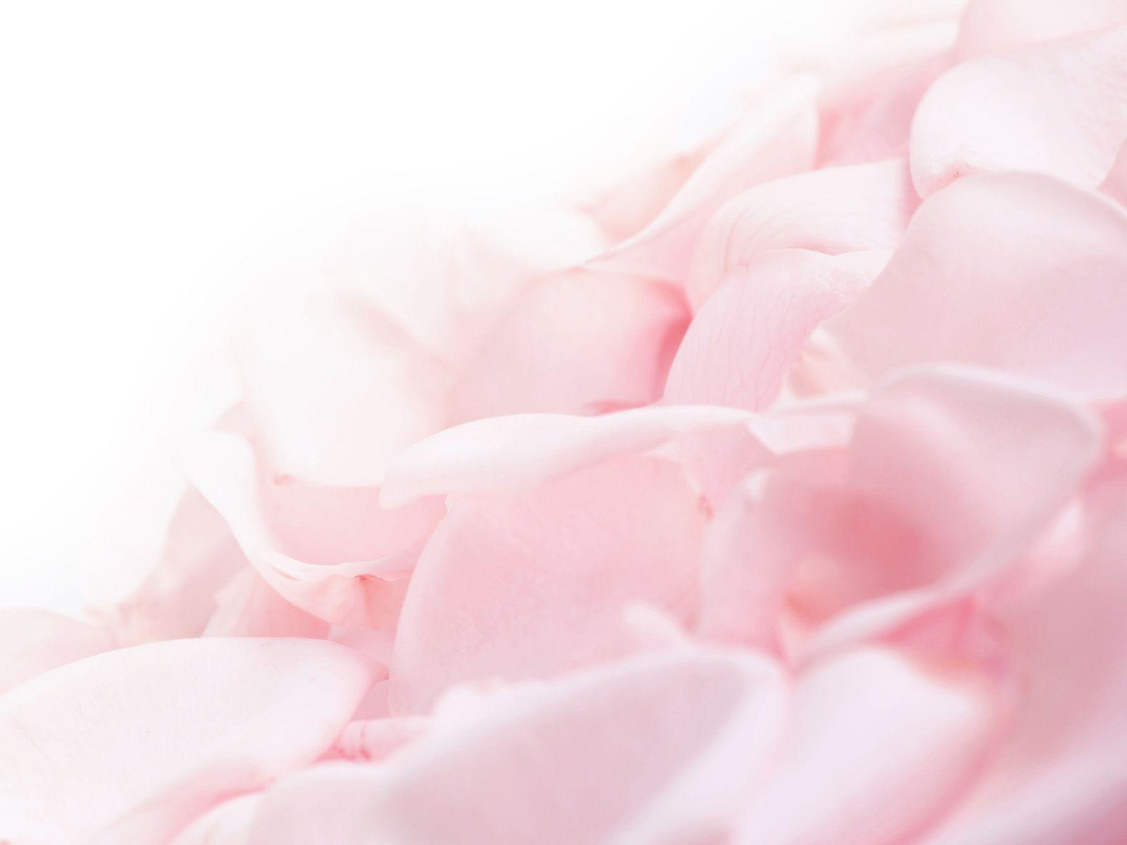 white and pink wallpaper - photo #27