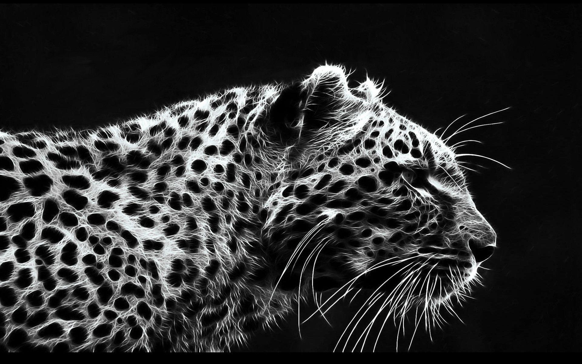 black leopard backgrounds - photo #1