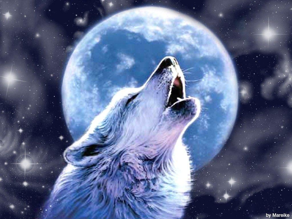 Wolves Howling Wallpaper, wallpaper, Wolves Howling Wallpapers hd