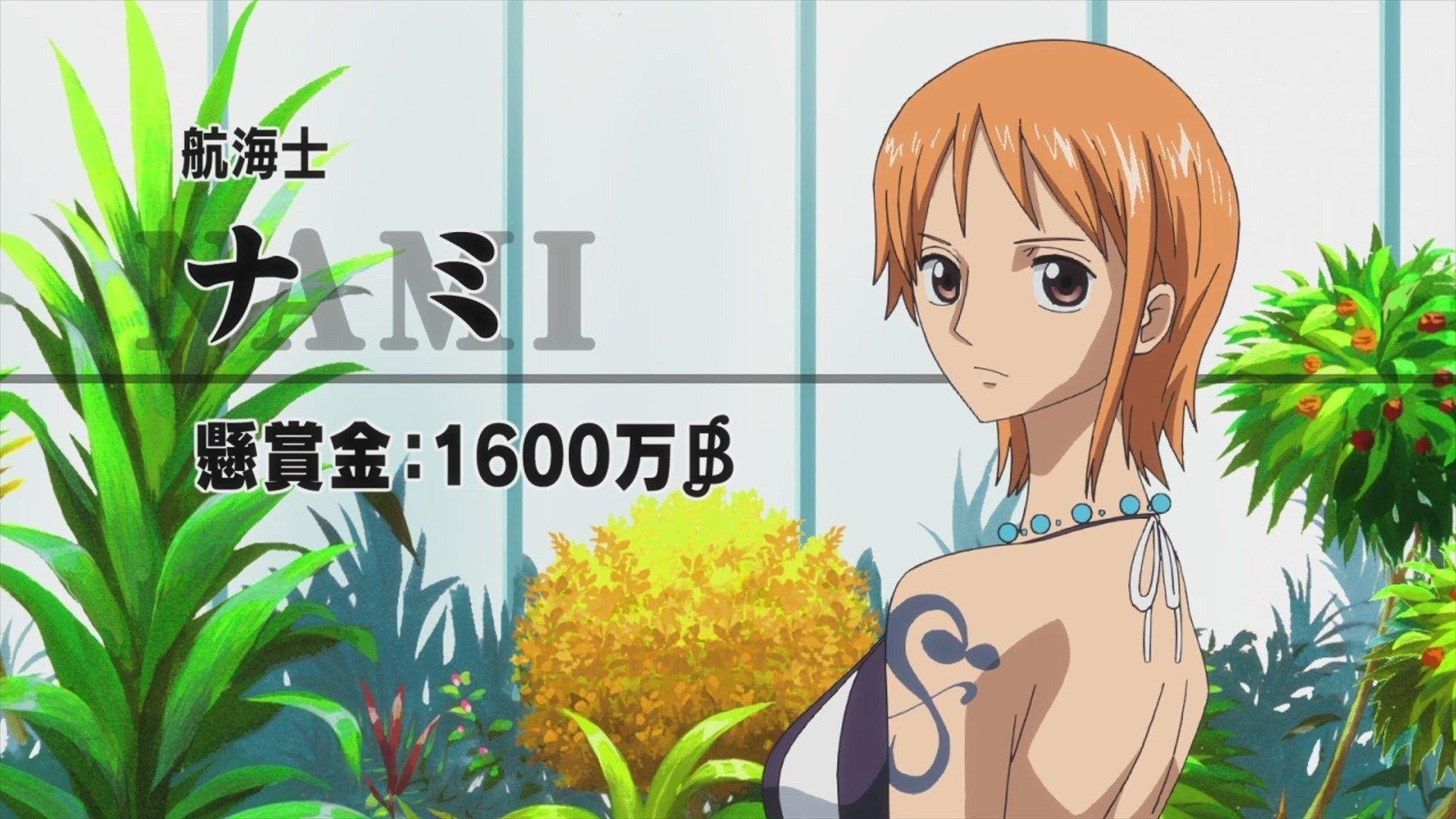wallpapers one piece 2015 nami and law wallpaper cave