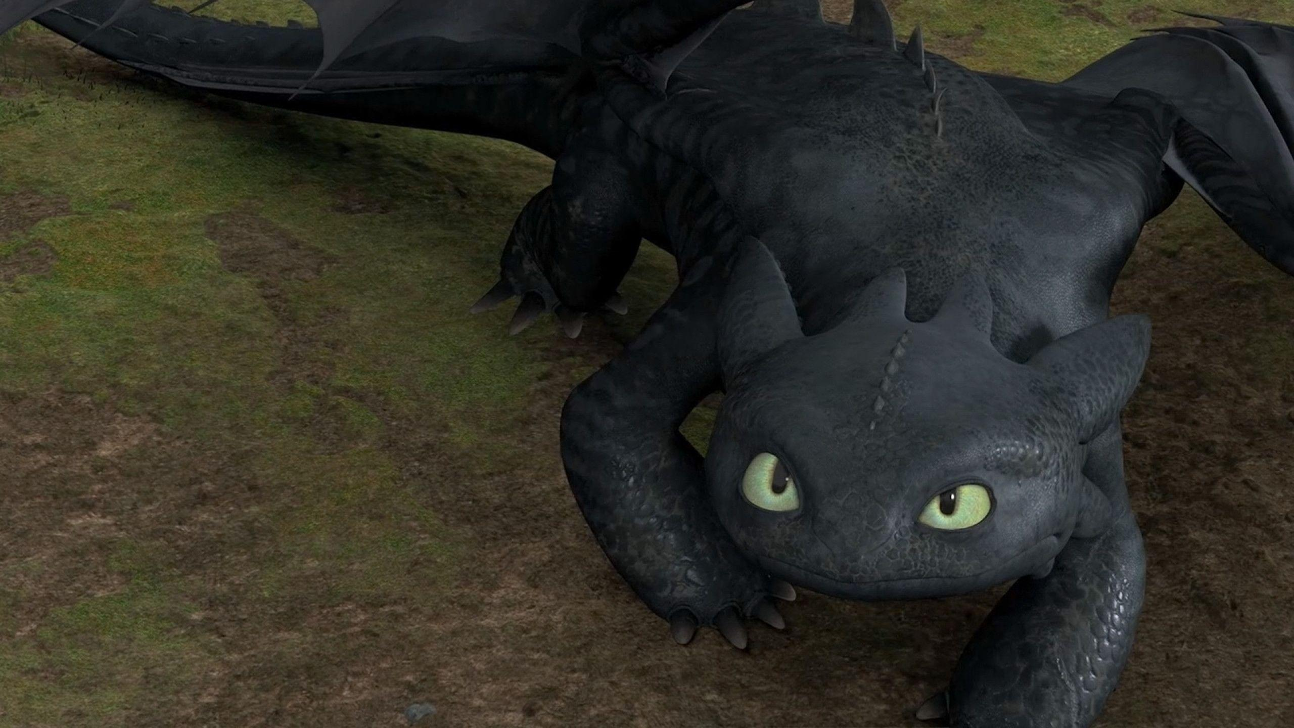 1 Toothless Wallpapers  Toothless Backgrounds
