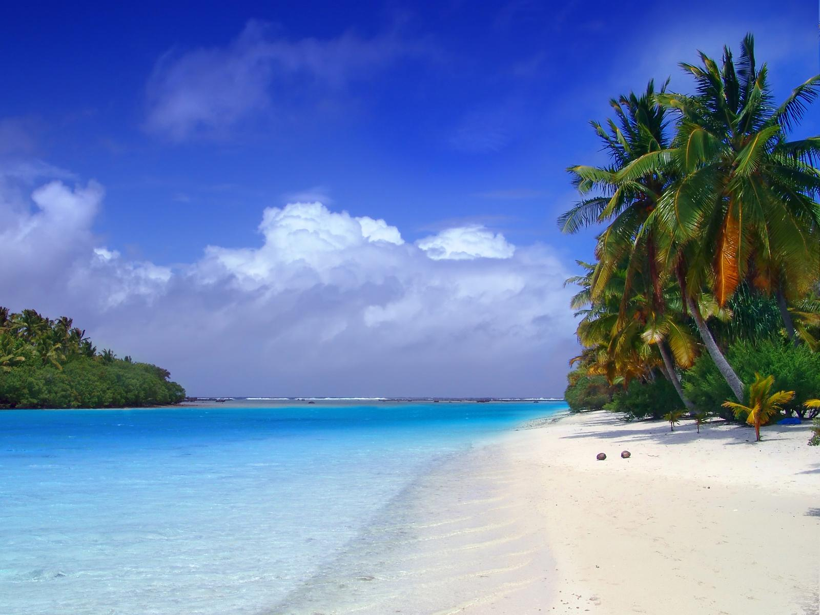 20 tropical backgrounds - photo #6