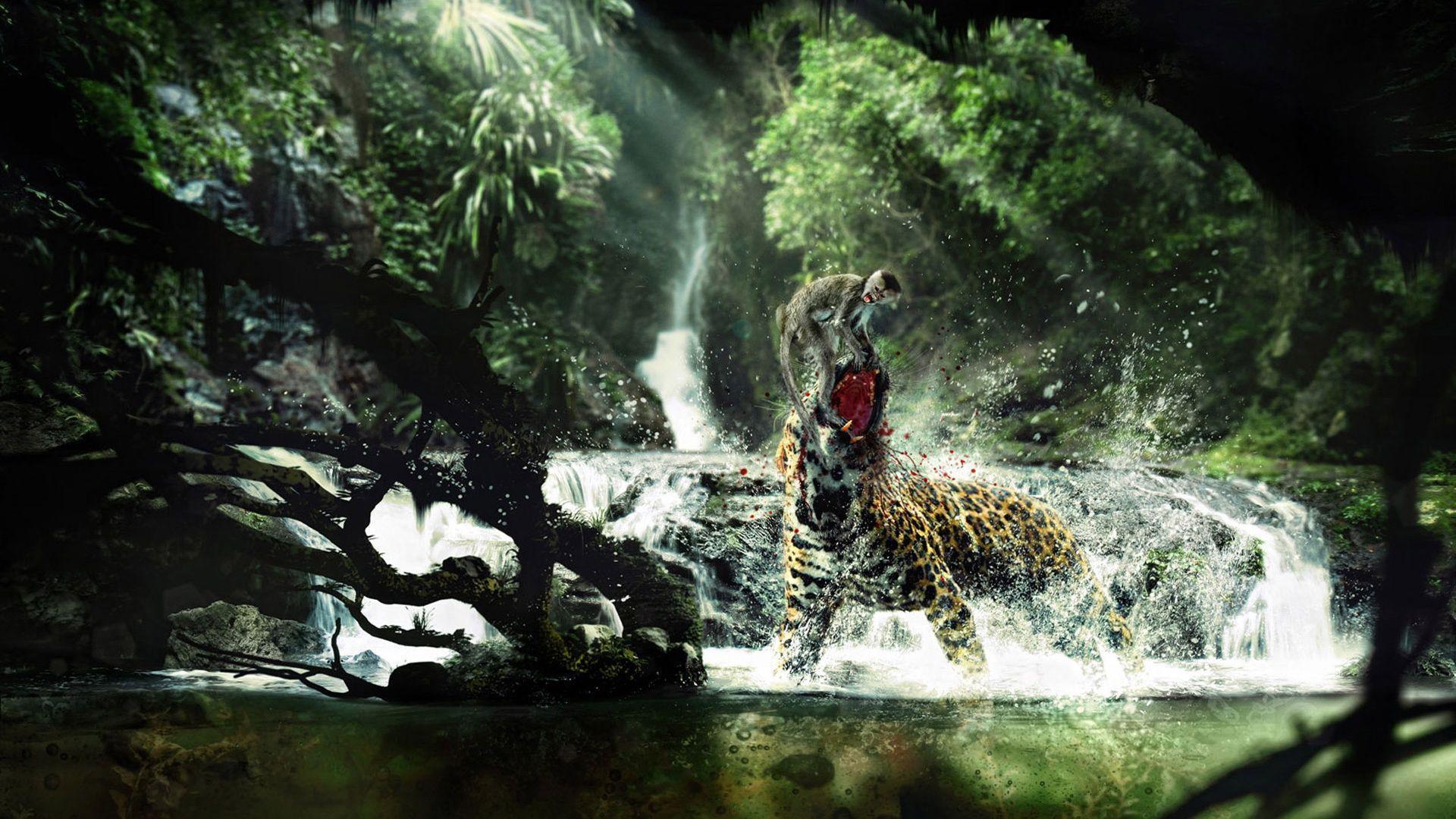 Download Fight Monkey Jaguar Tropical Forest WallpaperDownload