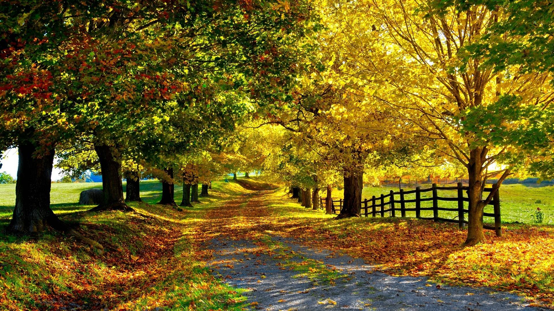 Fall season wallpapers wallpaper cave free seasons wallpapers and backgrounds wallpapers idol m4hsunfo Image collections