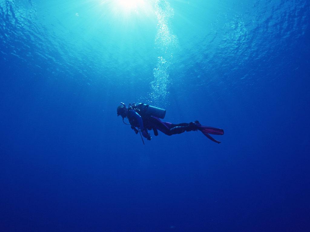 scuba diving wallpaper wallpapers - photo #3
