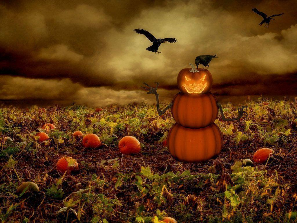 Scary Pumpkin Wallpapers Iphone Wallpapers