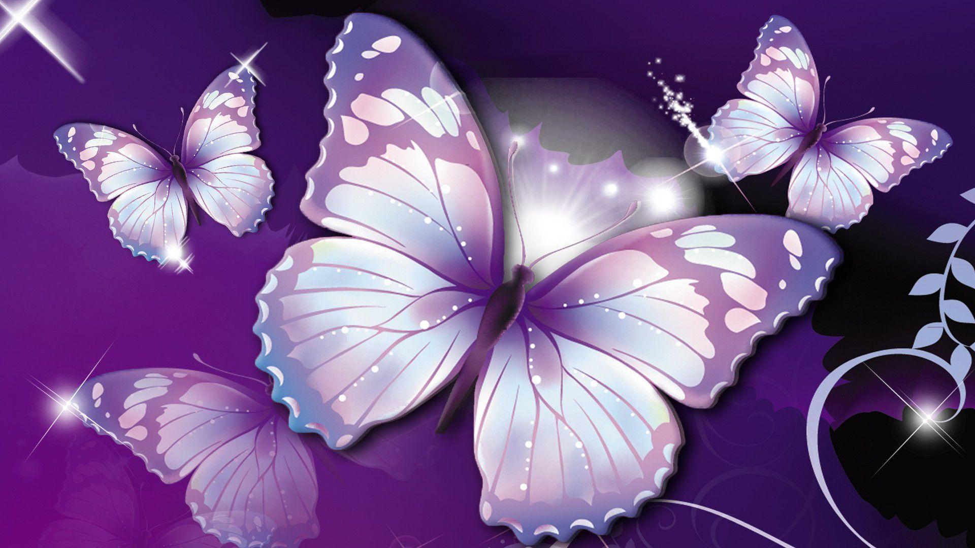 beautiful butterfly hd desktop - photo #16