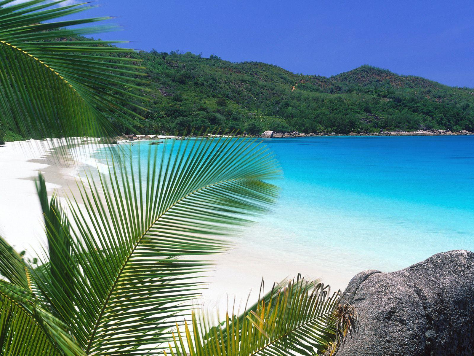 tropical island backgrounds - photo #22