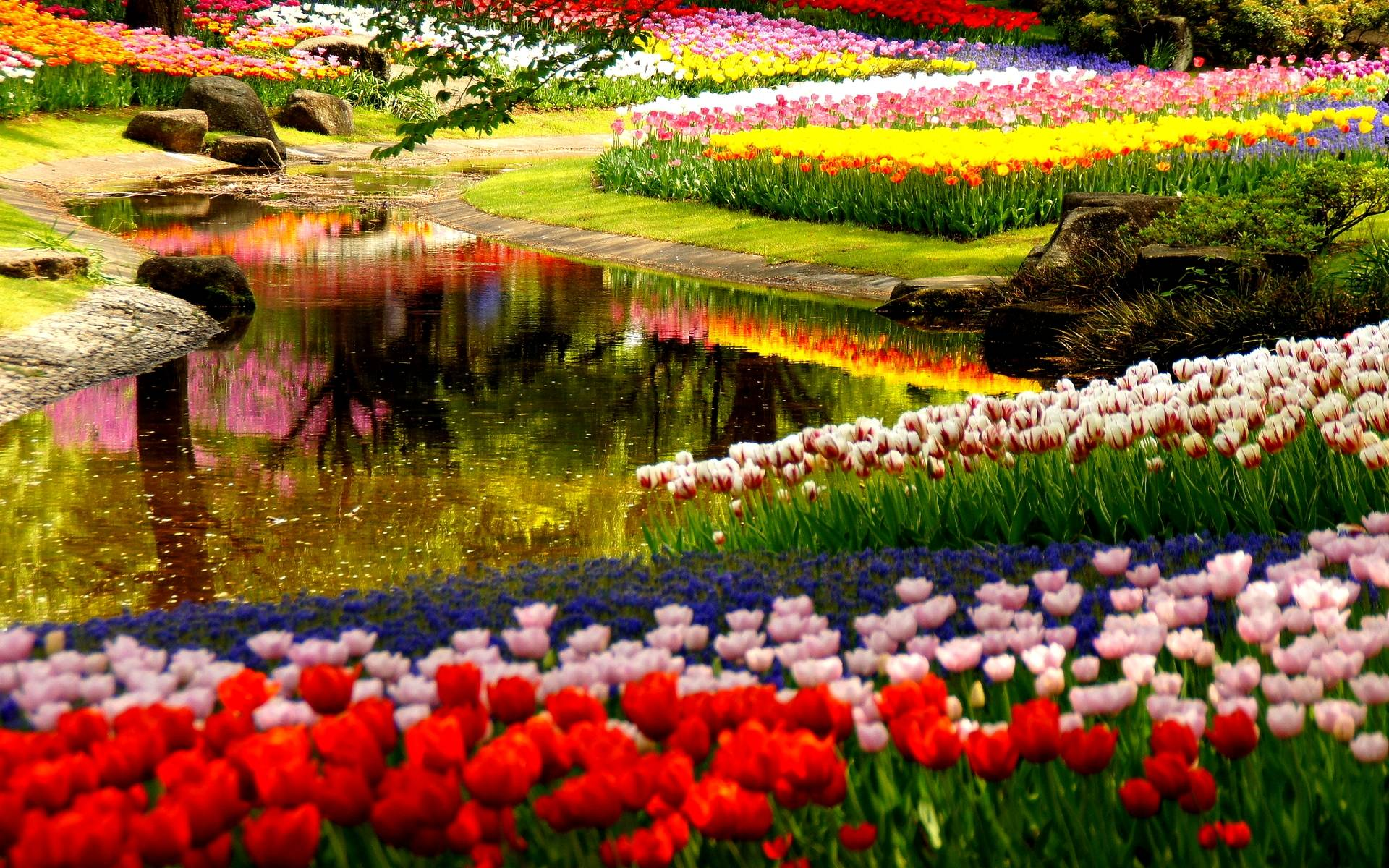 Spring Japanese Garden Wallpaper