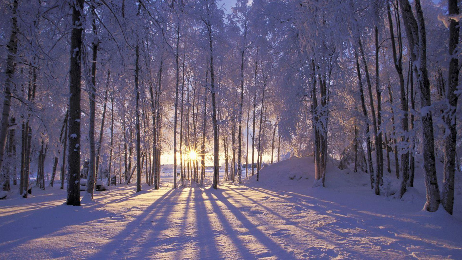 Sunrise At Winter Wallpaper - 1648800