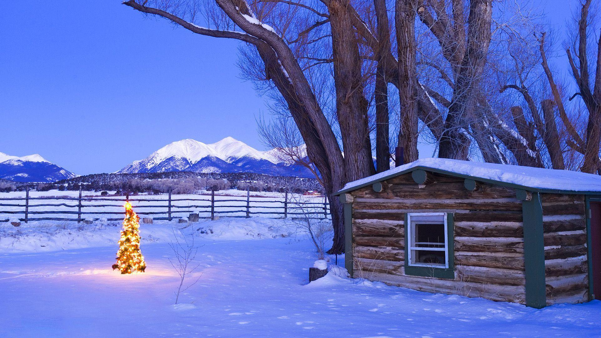 Free Christmas Nature Wallpapers