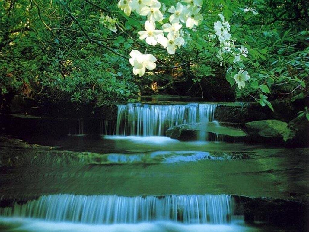 Waterfall Background Pictures