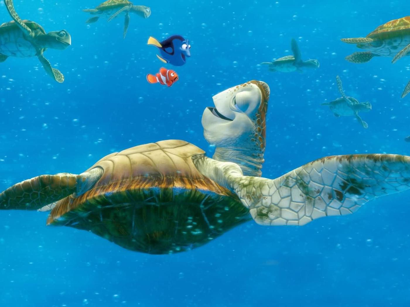 Sea Turtle Desktop Wallpapers Image & Pictures