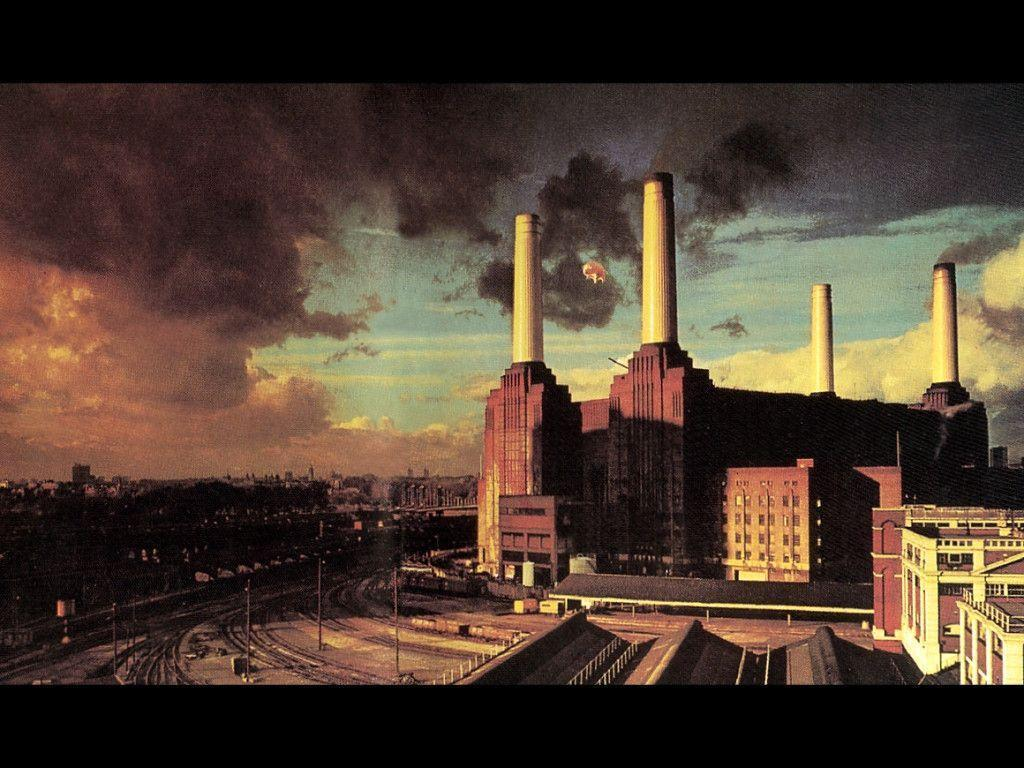 Animals Wallpaper Pink Floyd