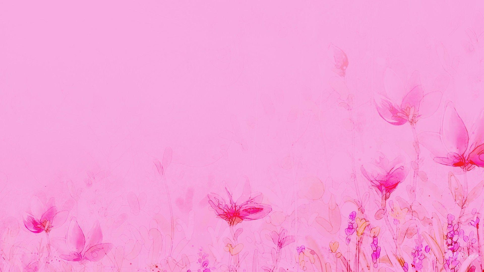 Light Pink Flower Wallpapers Wallpaper Cave