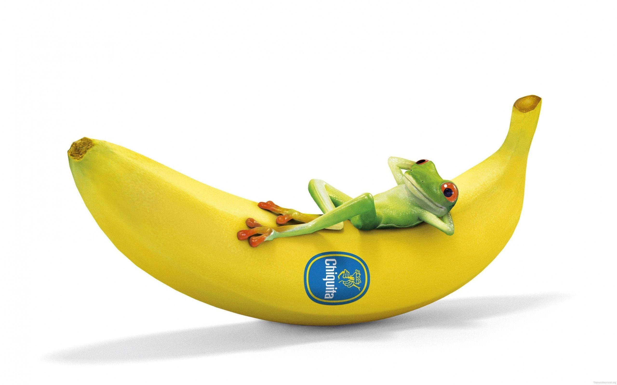 Funny Cartoon Frog And Banana Wallpapers Id