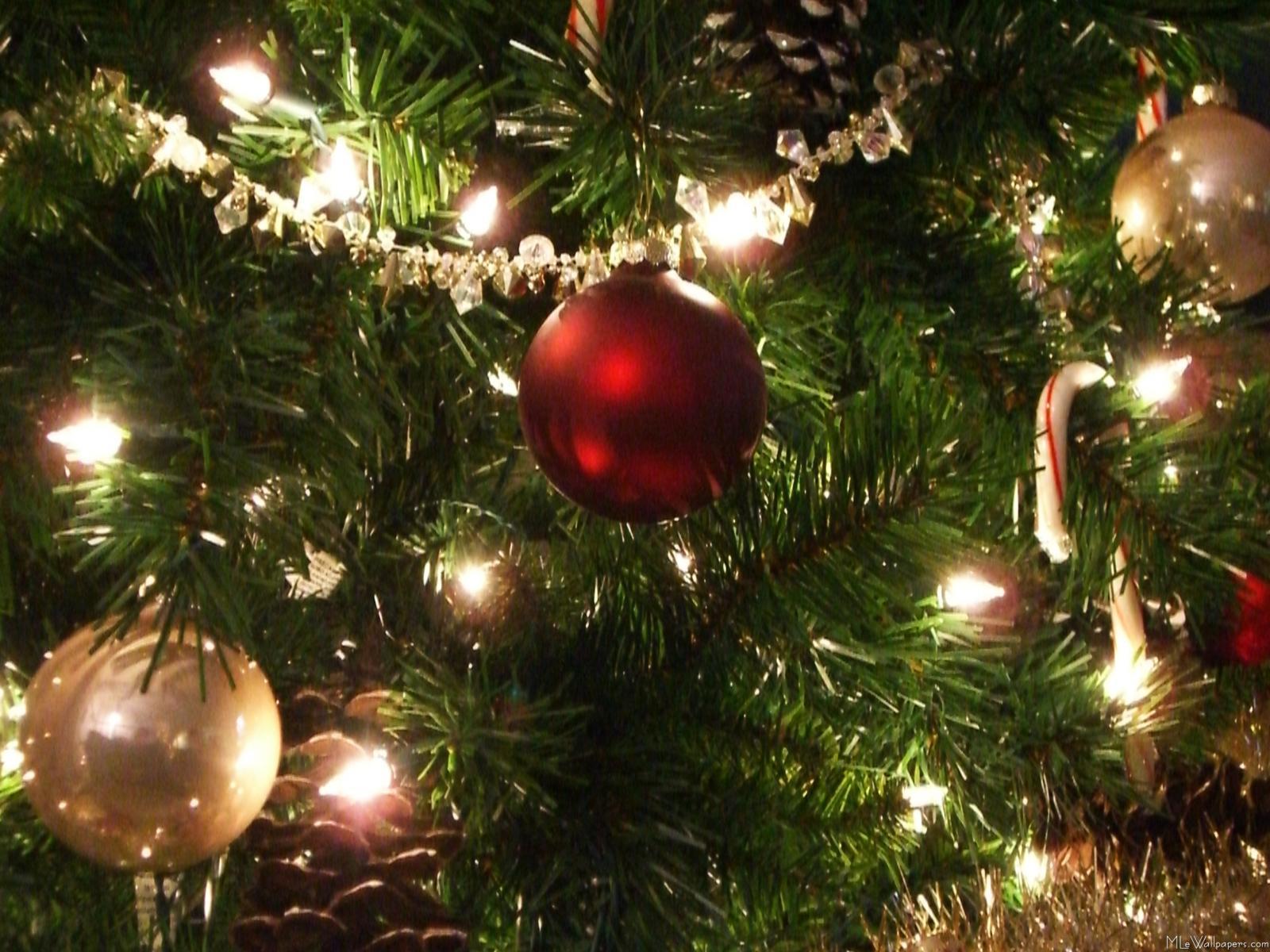 tree christmas house wallpaper - photo #21