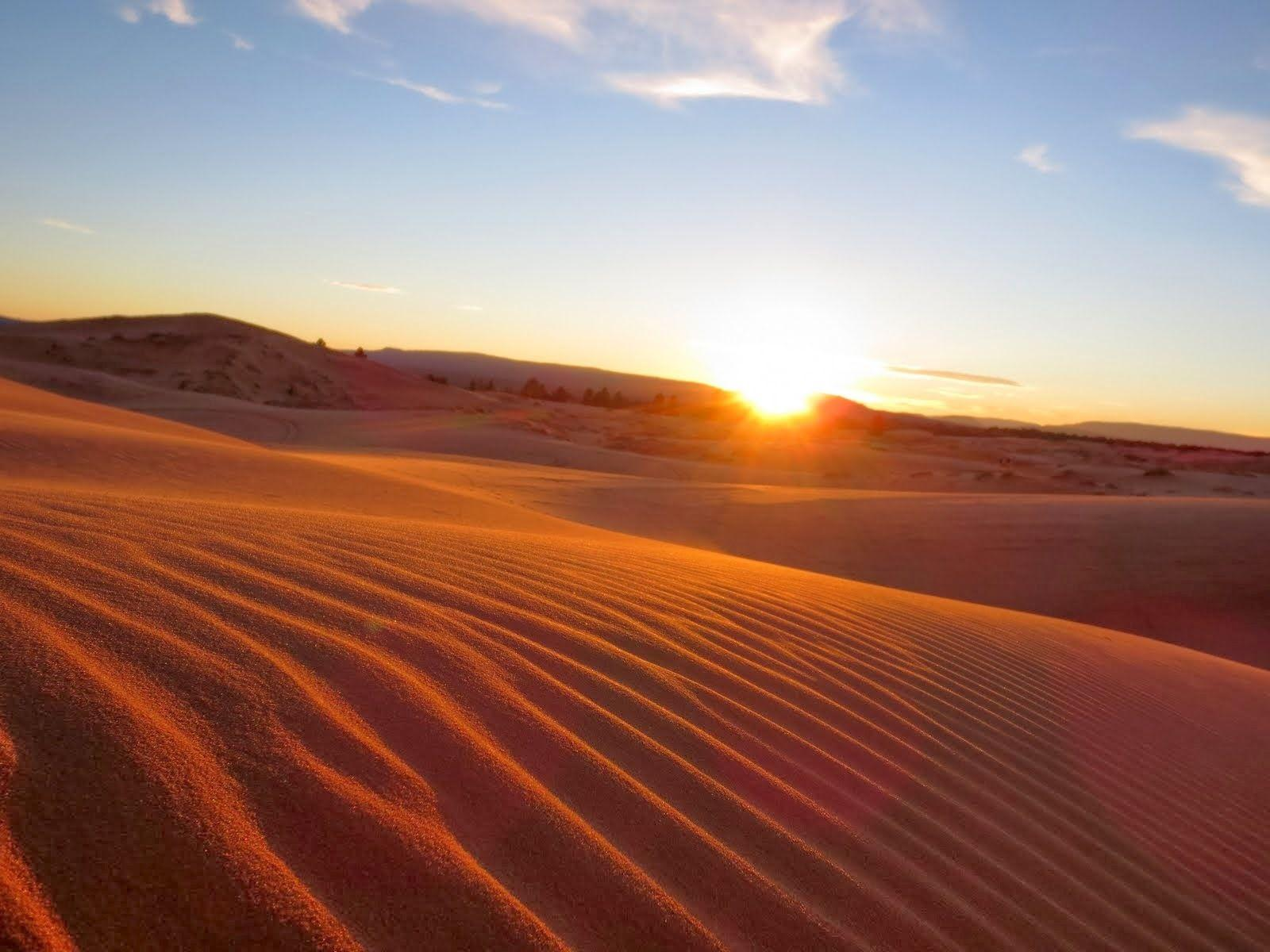 Sand Dunes Sunset Pictures « Desktop Backgrounds Wallpapers HD