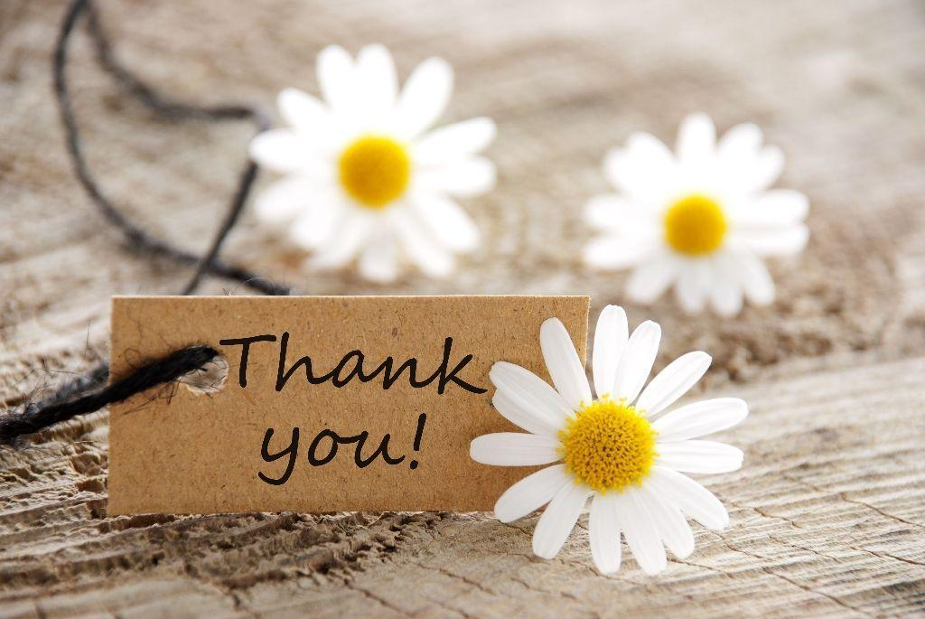 Image Thank You Cute Flowers Wallpaper | Thank You | Download High ...