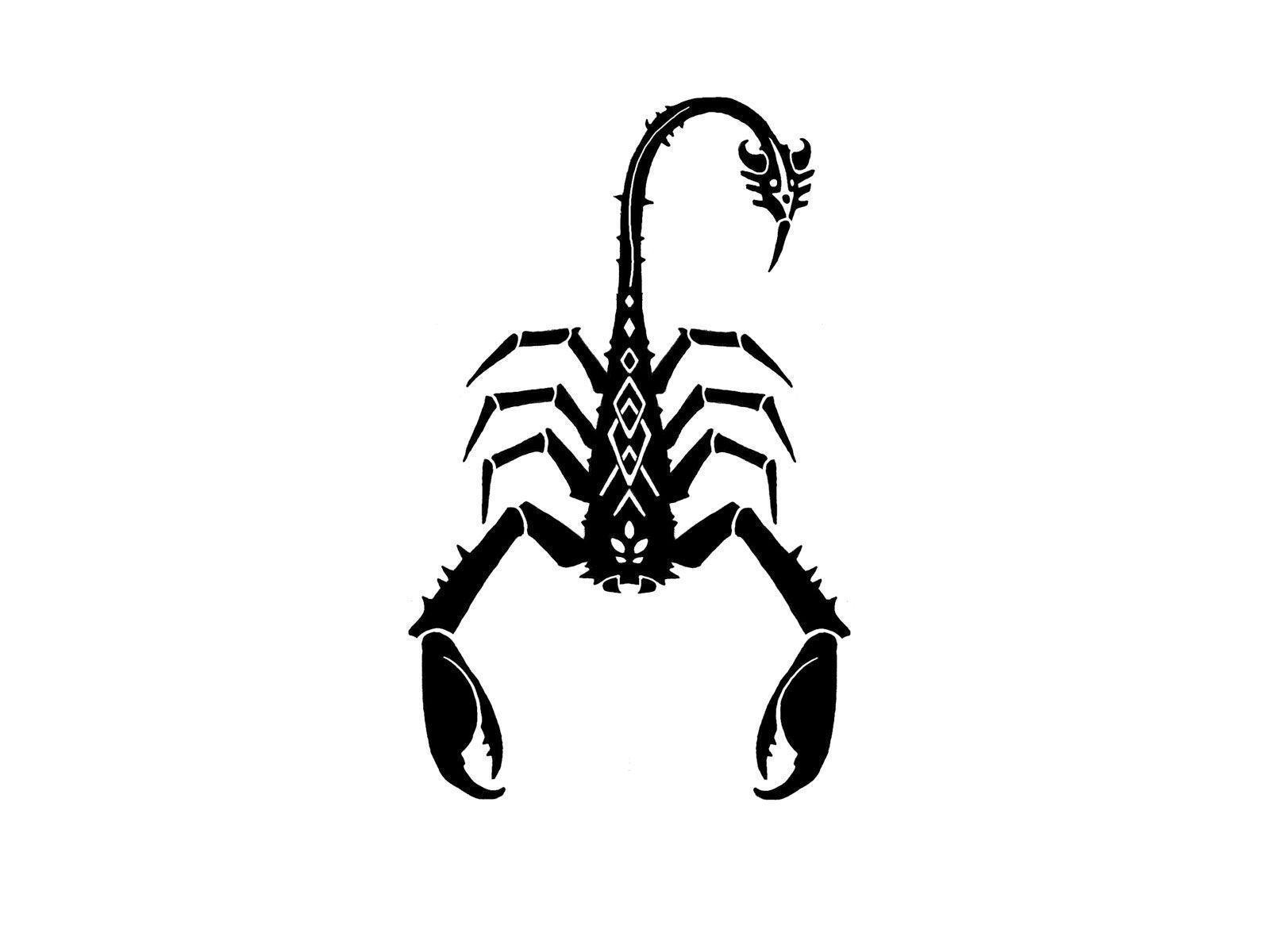 Free Download Scorpion Wallpapers