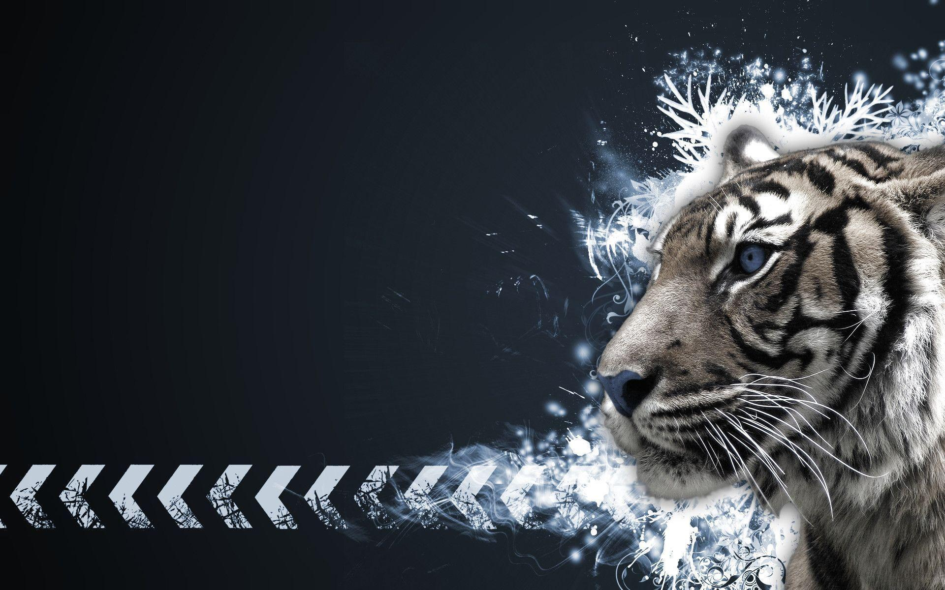 Tiger White Wallpapers