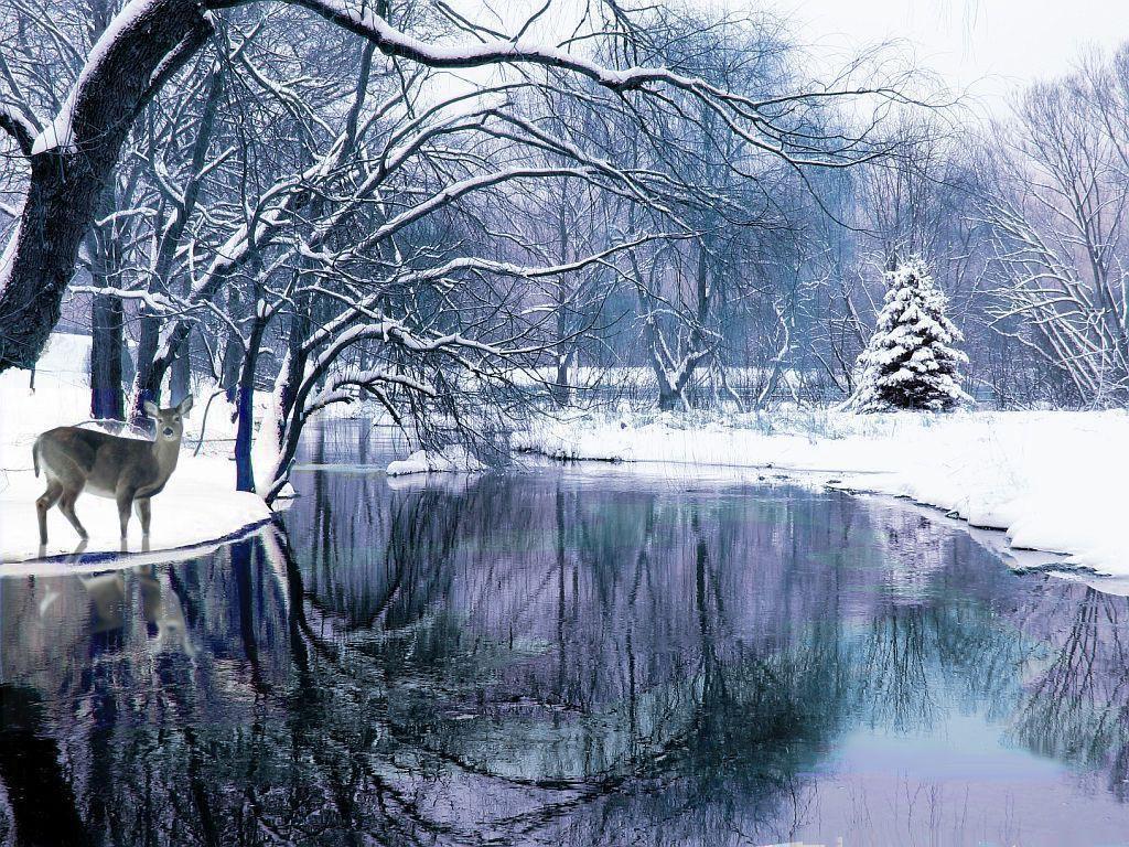 Winter Scenes Wallpapers Free - Wallpaper Cave