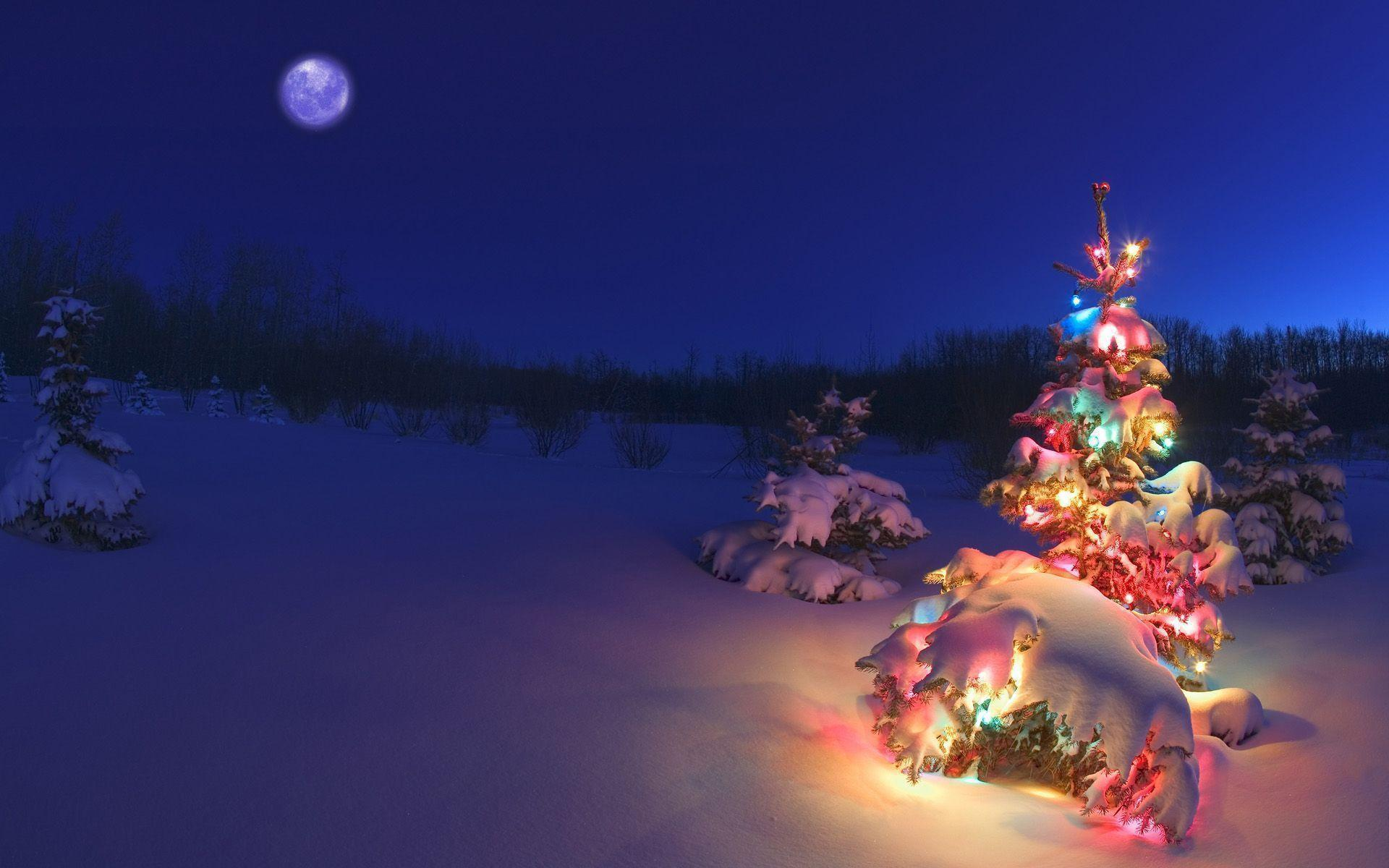 Christmas Night Wallpapers - W...