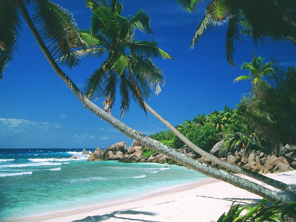 Beach screen backgrounds wallpaper cave - Large screen wallpapers free ...