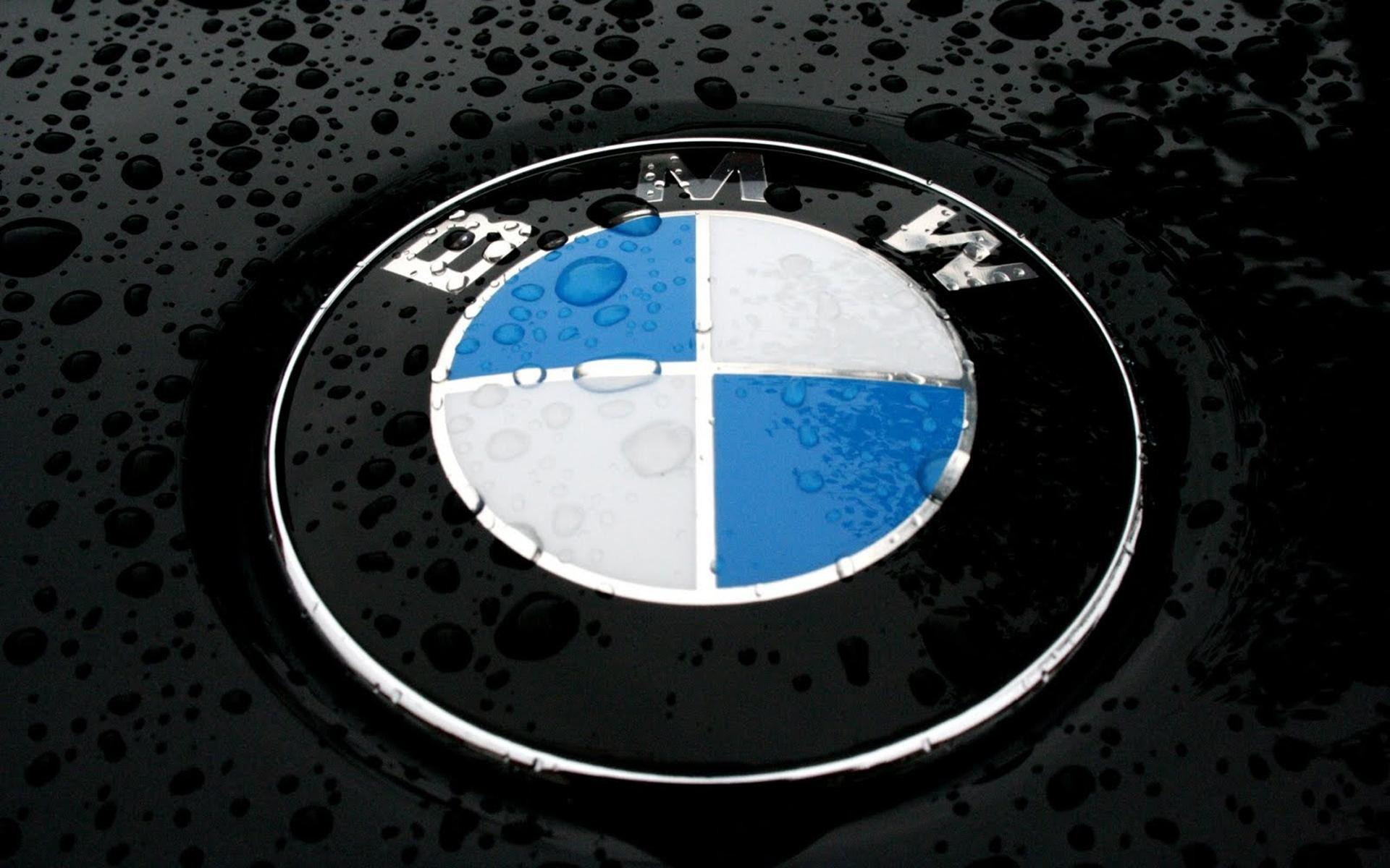 bmw logo wallpapers full hd wallpaper search
