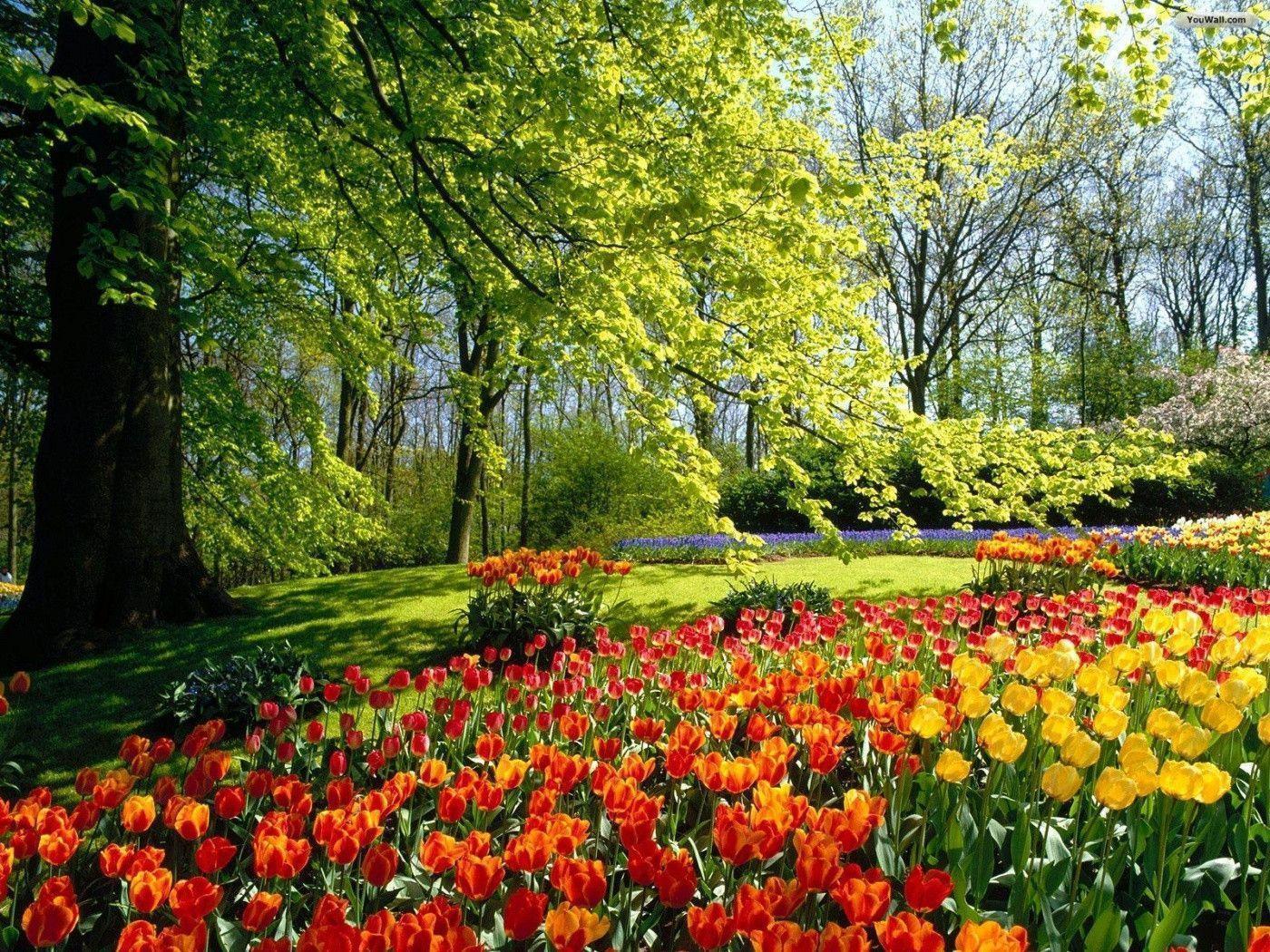 Beautiful Flower Garden Wallpapers