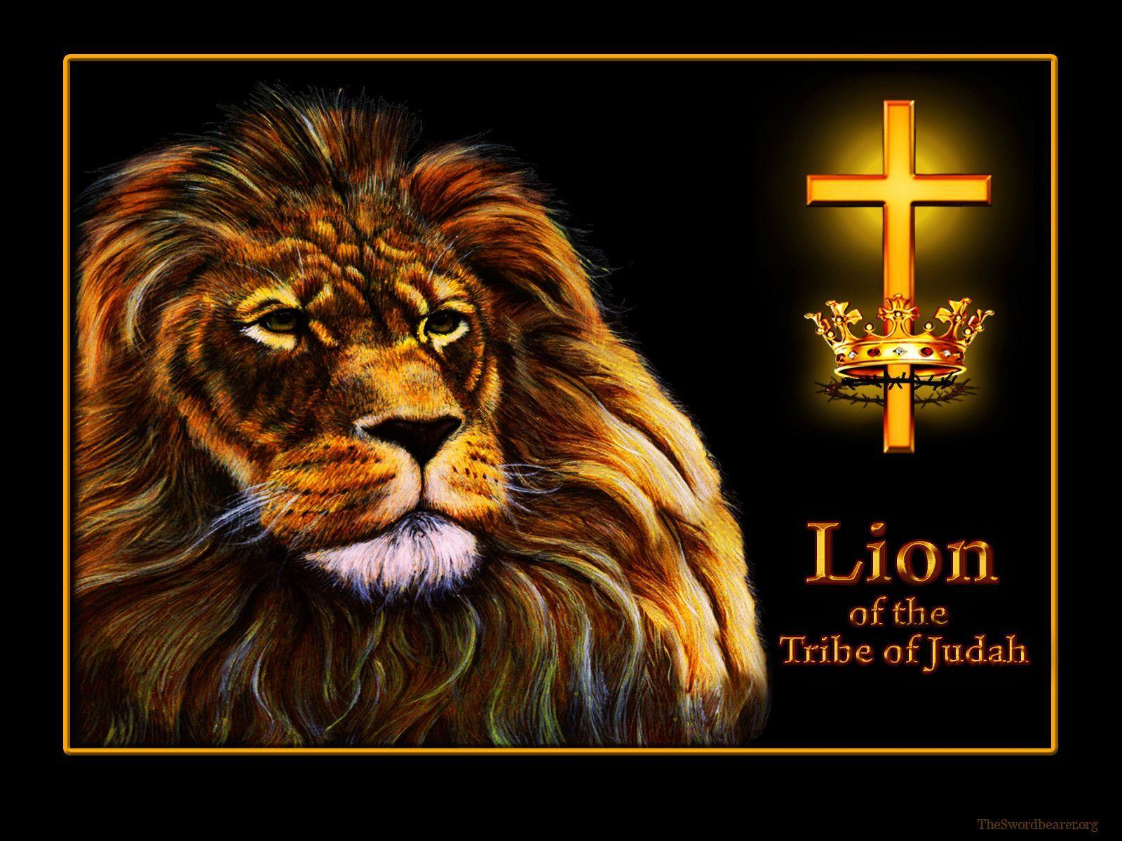 Wallpaper: Lion of the tribe of Judah