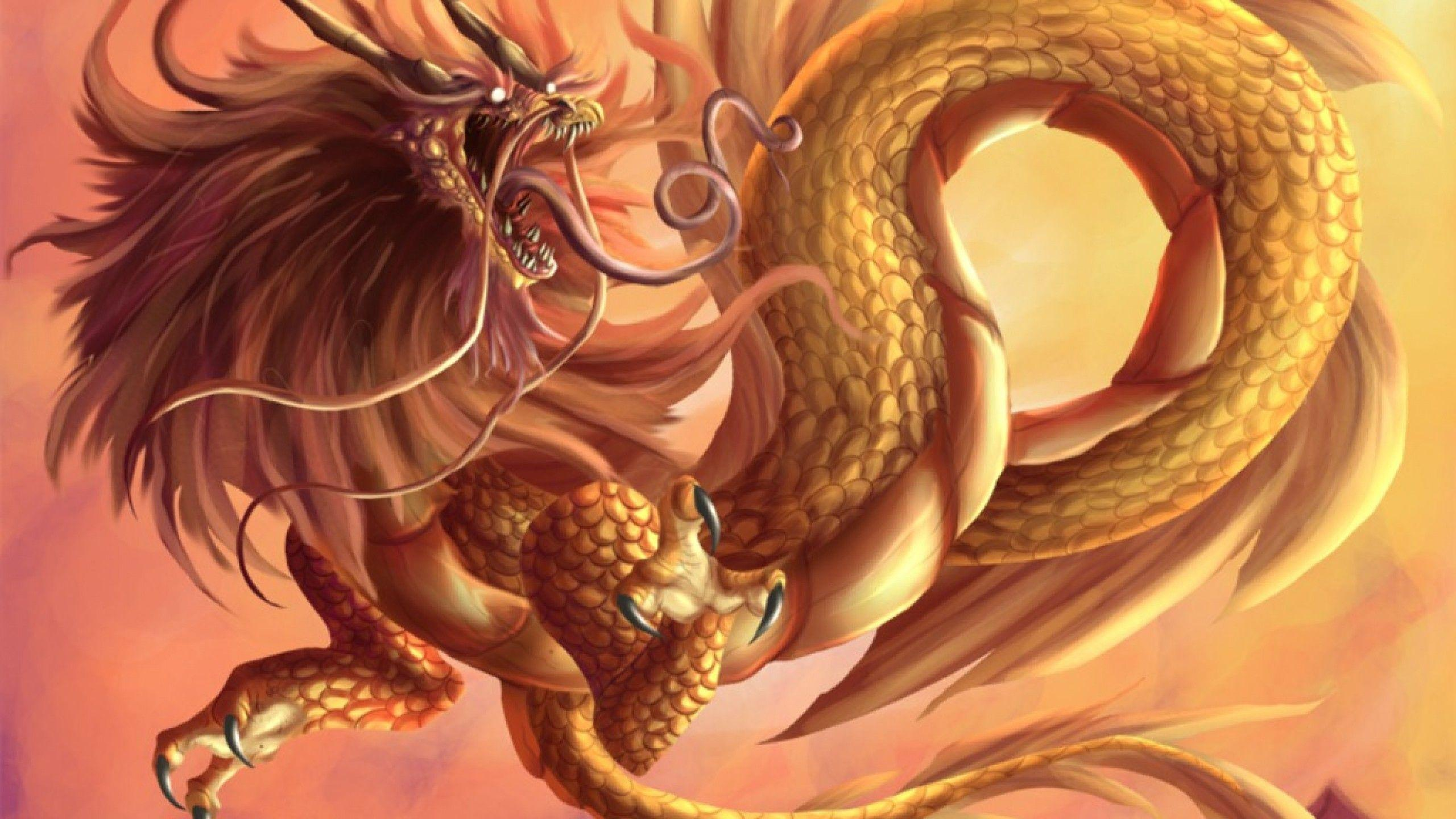 Golden Chinese Dragon Wallpapers
