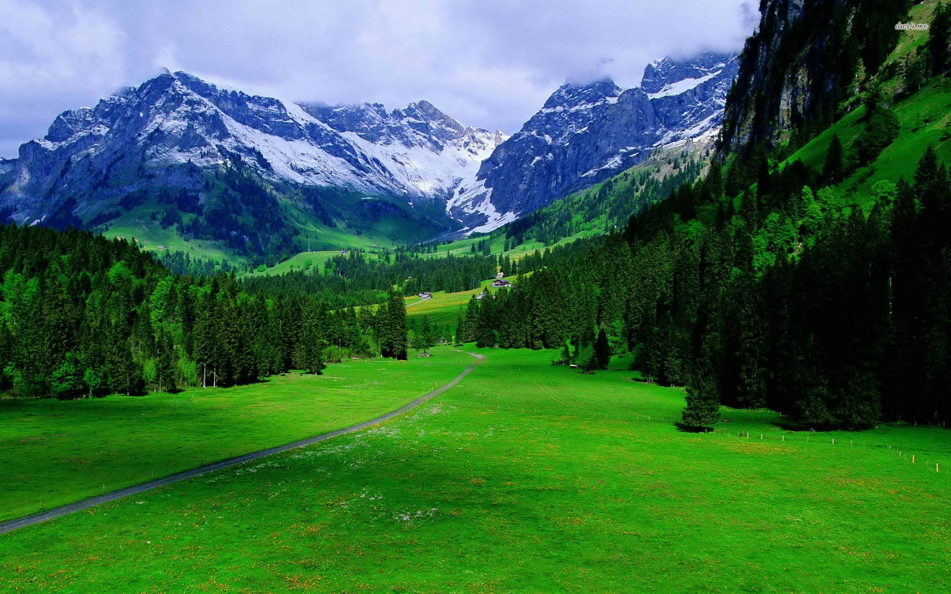The Alps In Switzerland Nature Wallpaper 1920x1200 px Free ...
