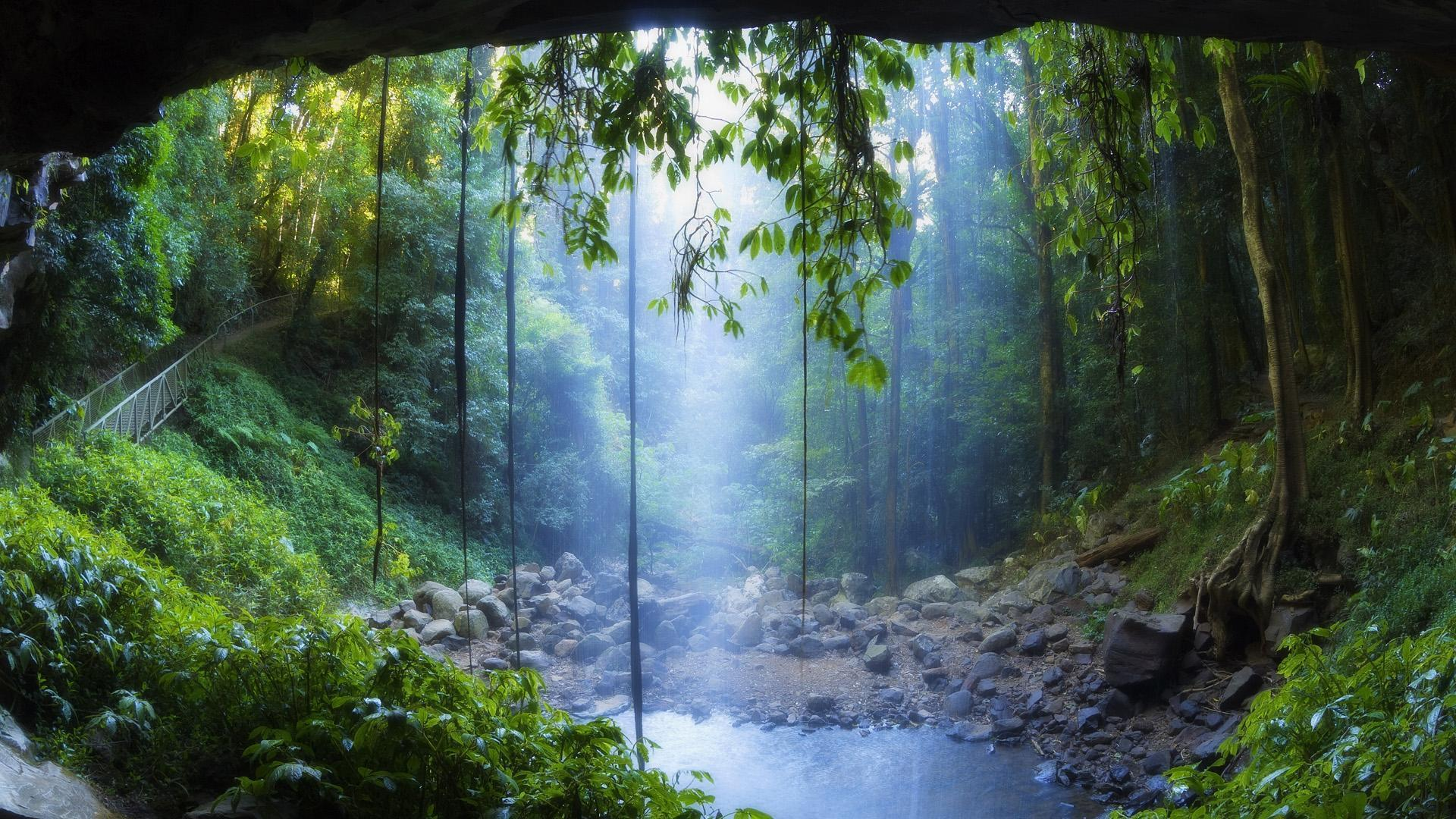 Rain forest wallpapers wallpaper cave - Crystal pools waterfall ...