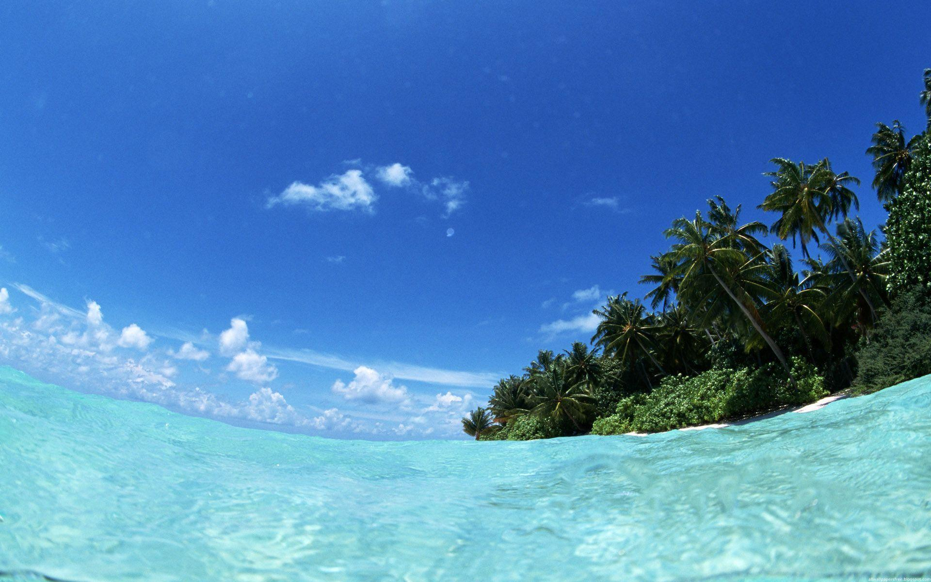 tropical island backgrounds - photo #20