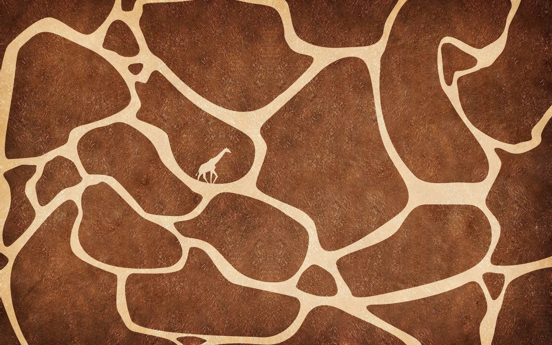 Giraffe Backgrounds Wallpaper Cave