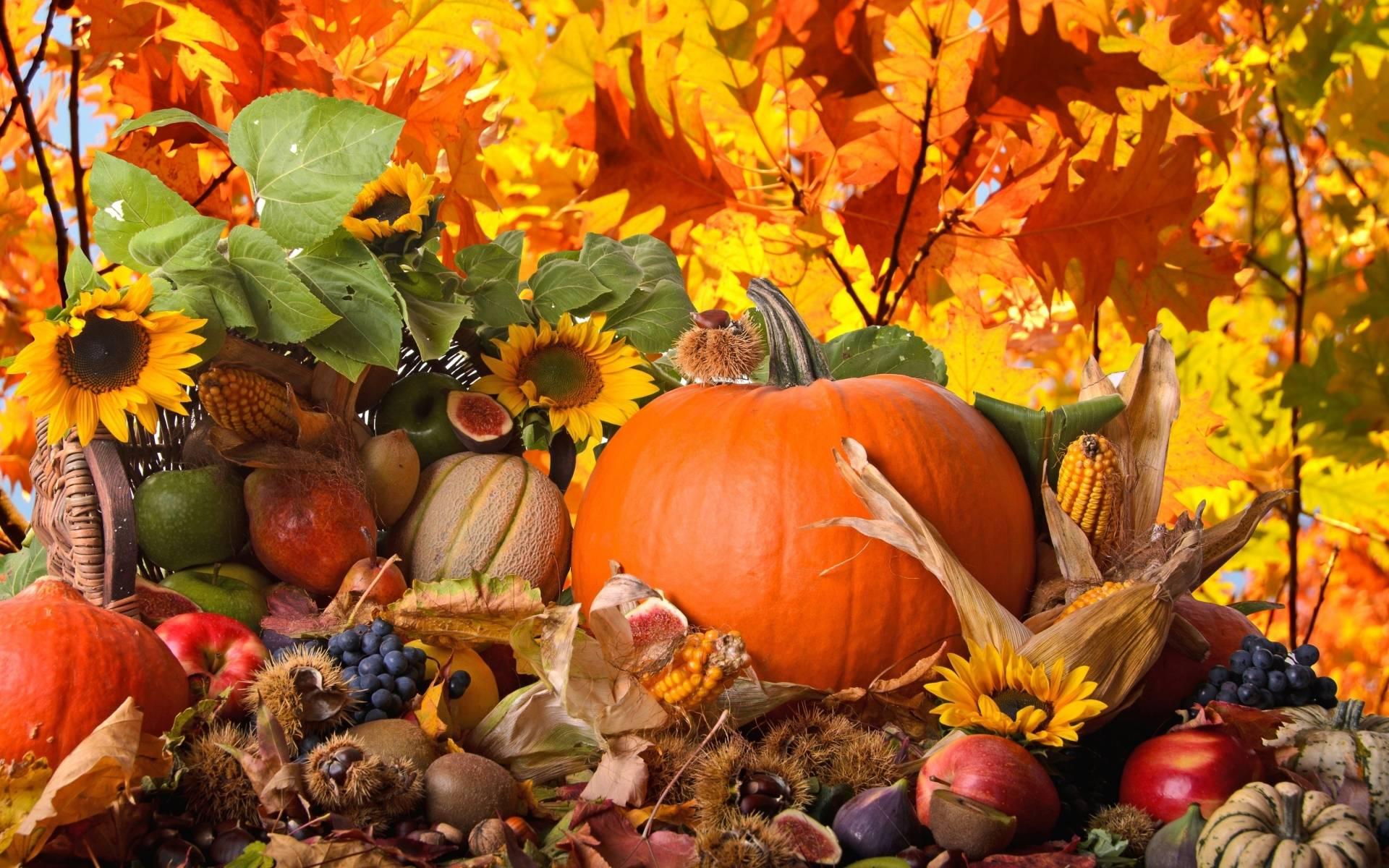 autumn wallpaper 007 free - photo #47