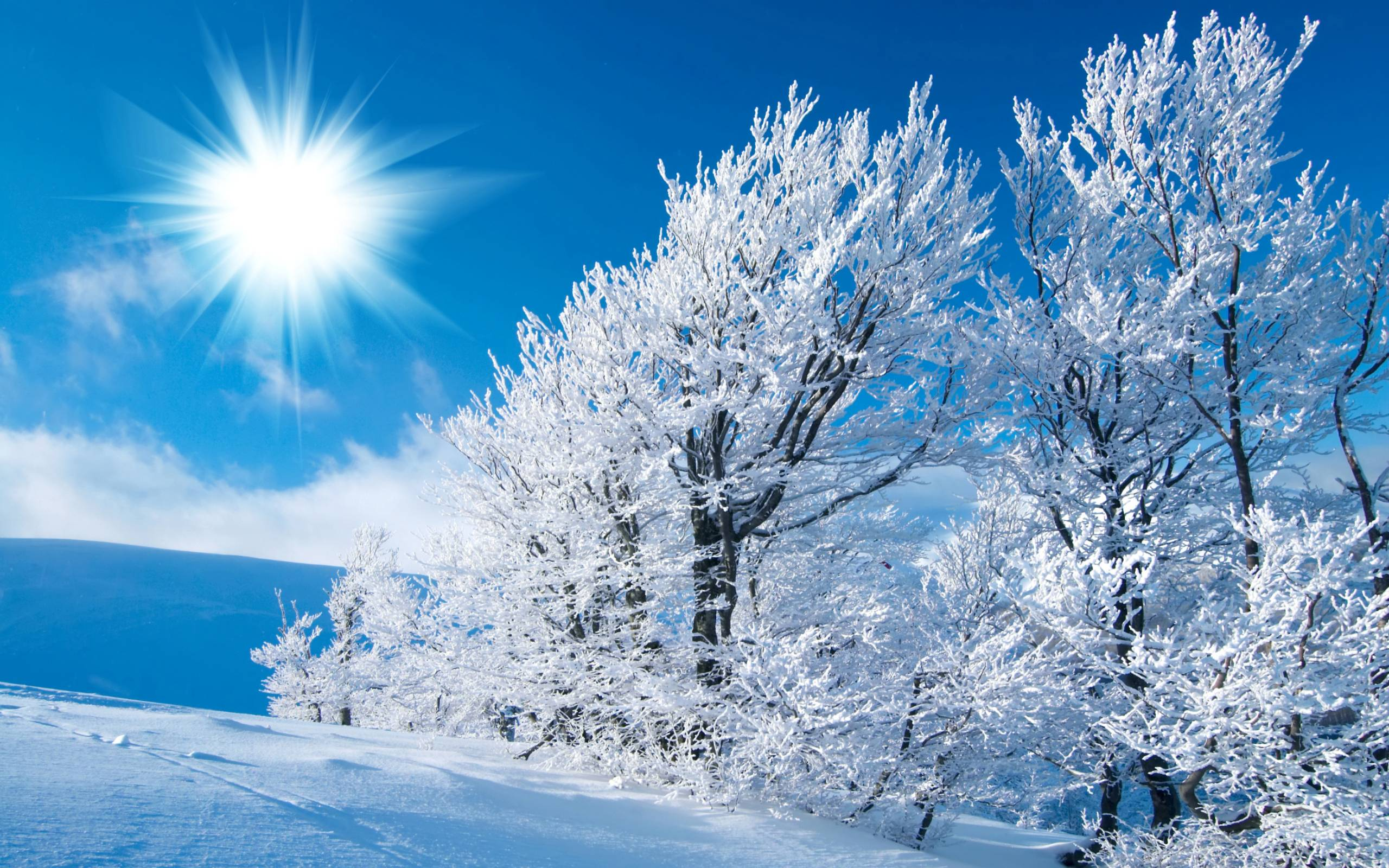 winter scene desktop wallpapers 2015