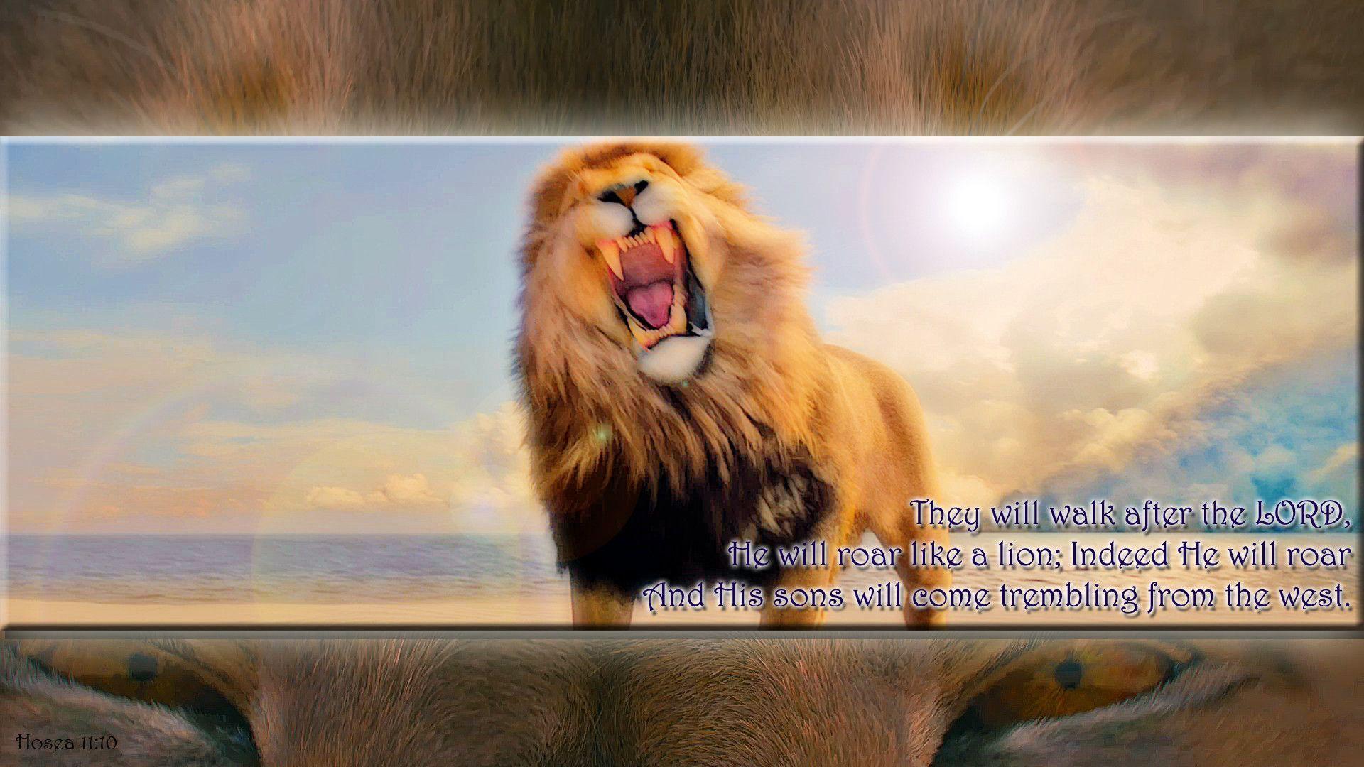 Narnia Aslan Wallpaper