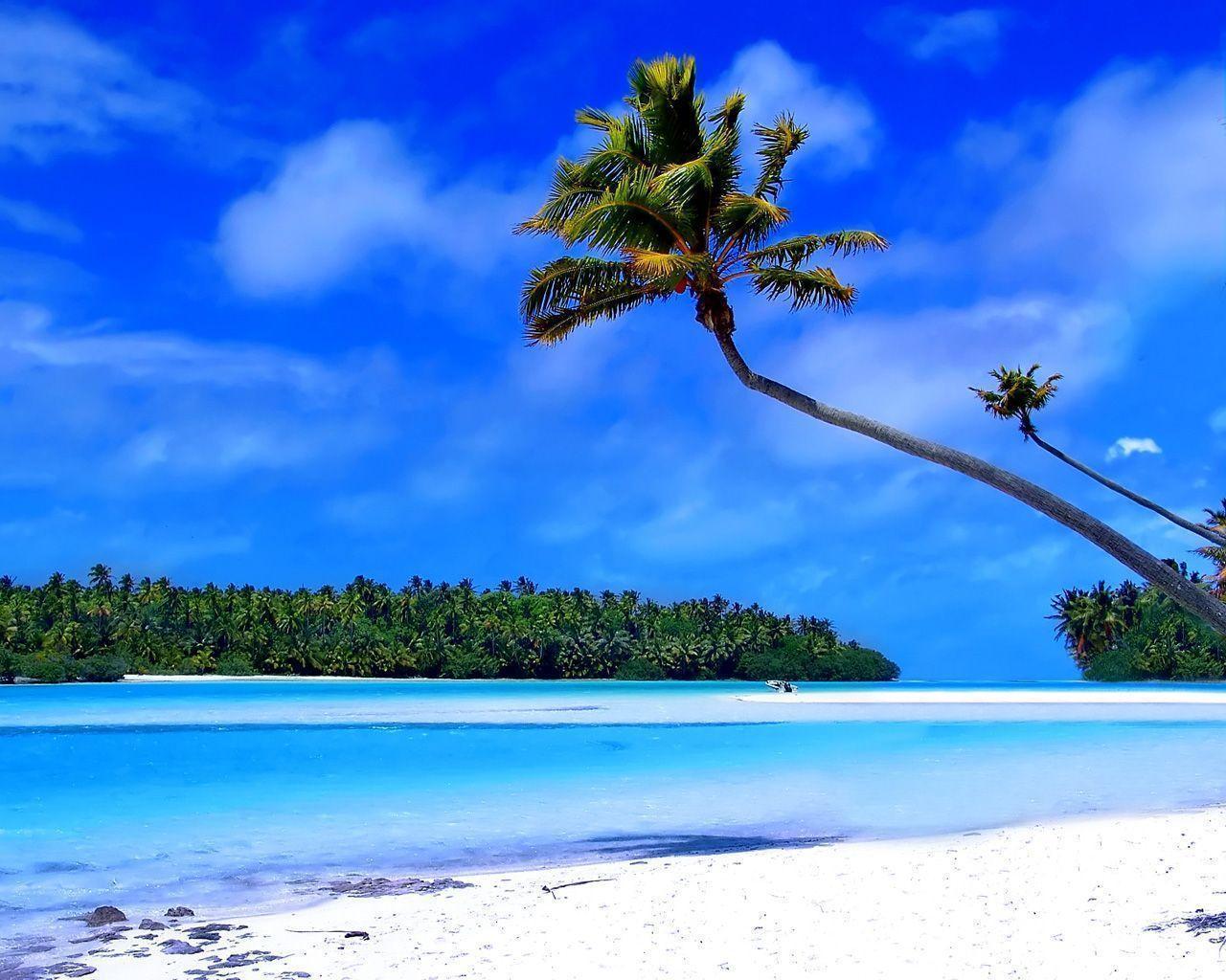 Tropical Island Beach Ambience Sound: Free Caribbean Beach Wallpapers