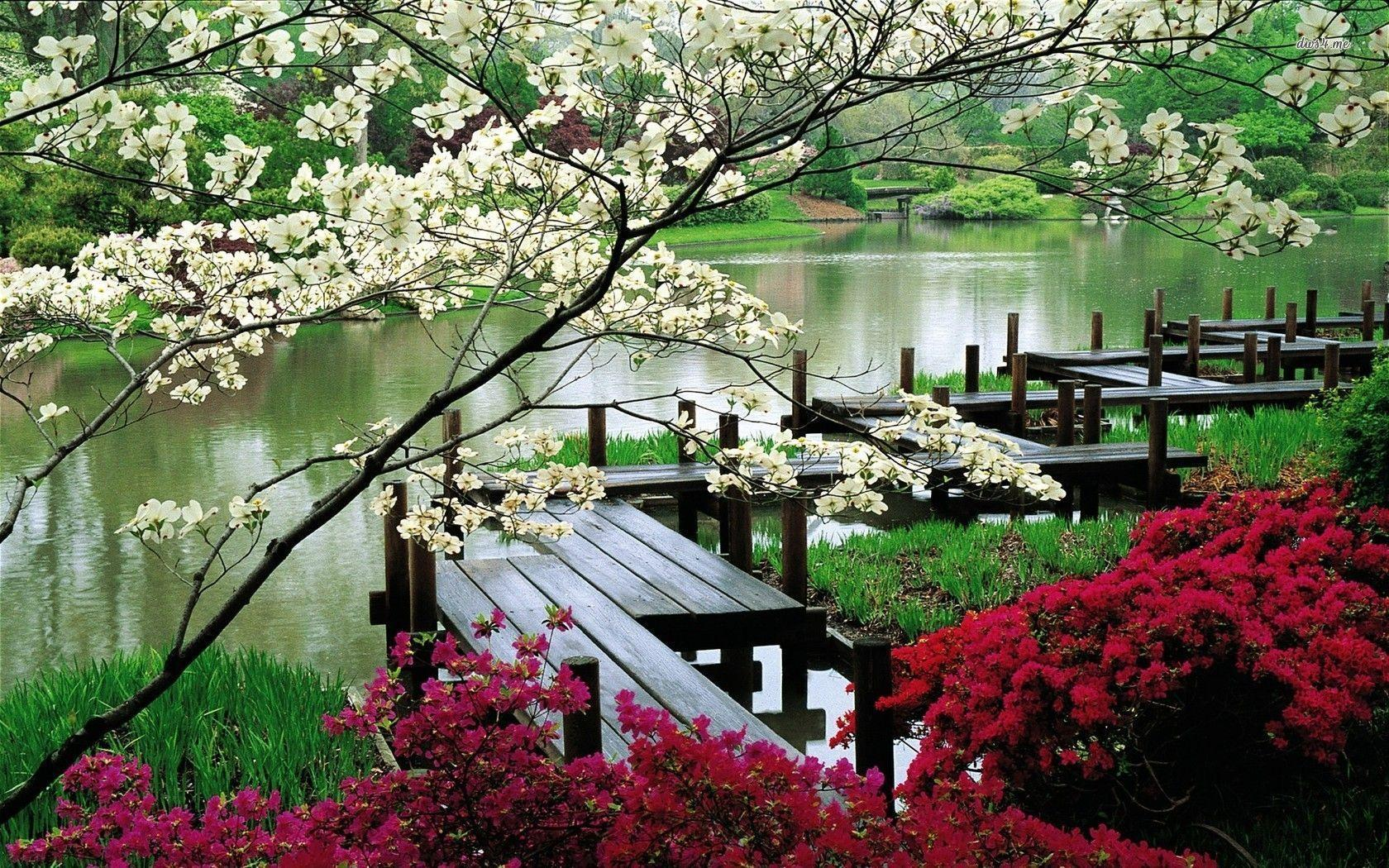 Japanese garden wallpaper - Nature wallpapers - #