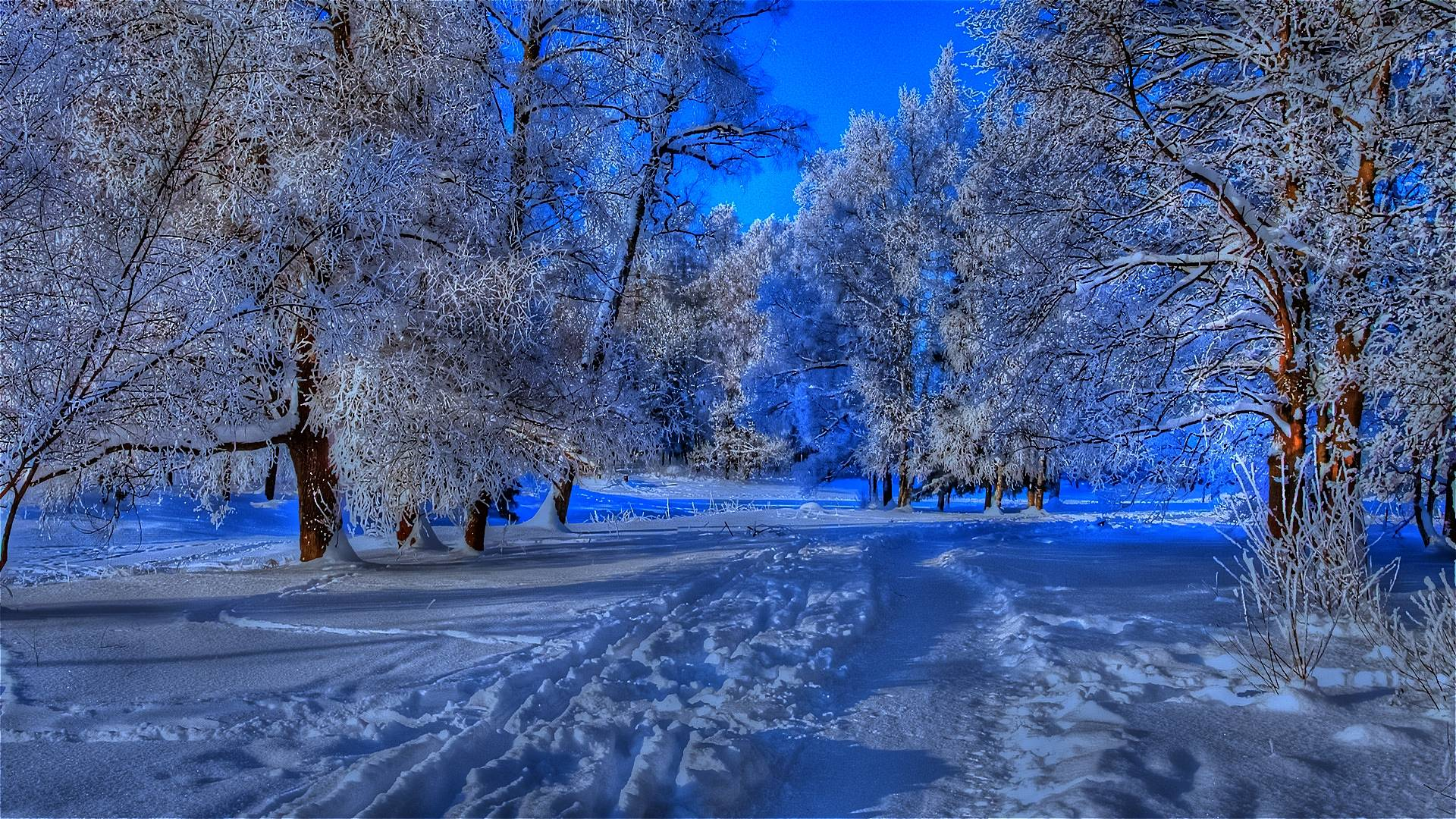 winter wallpaper with a - photo #24
