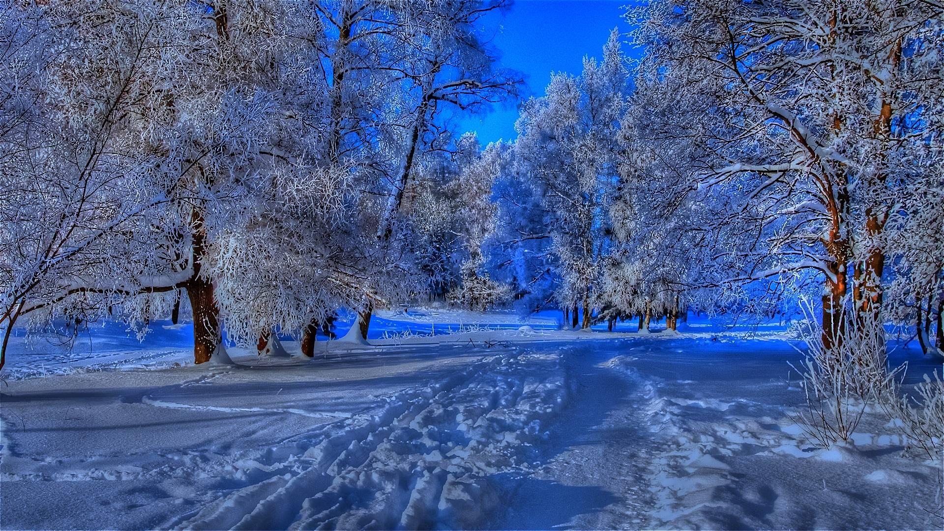 Beautiful Winter Backgrounds - Wallpaper Cave