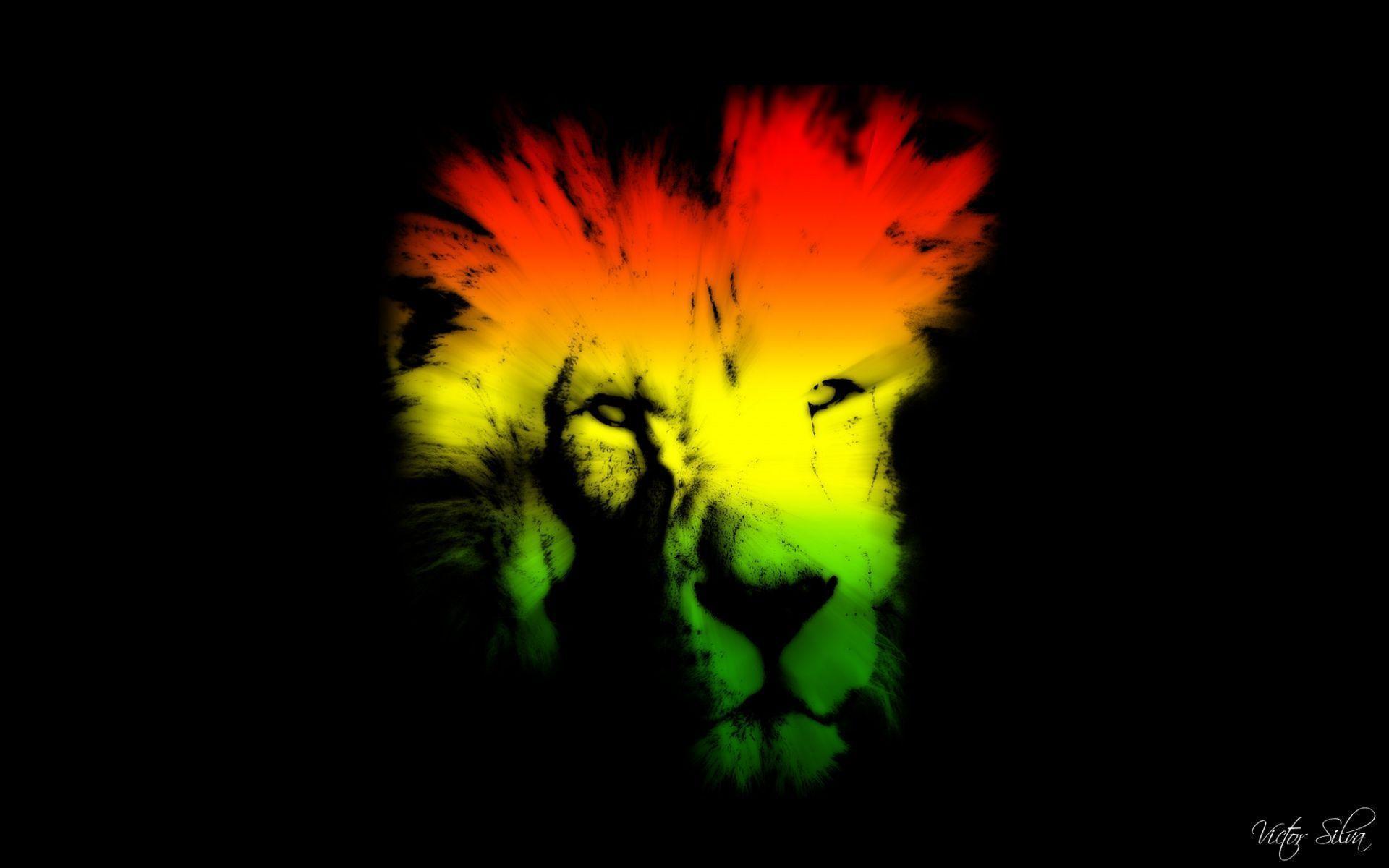 Rasta Lion Hd Wallpaper Rasta Color Background...