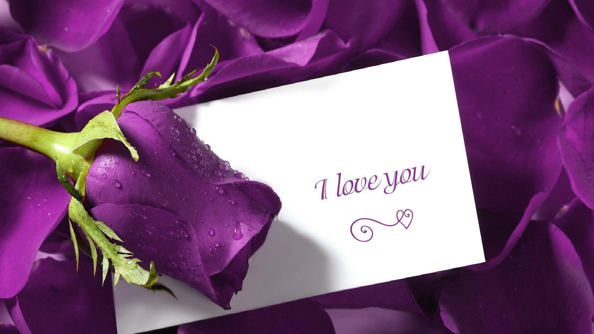 Love Flower Wallpapers Wallpaper Cave