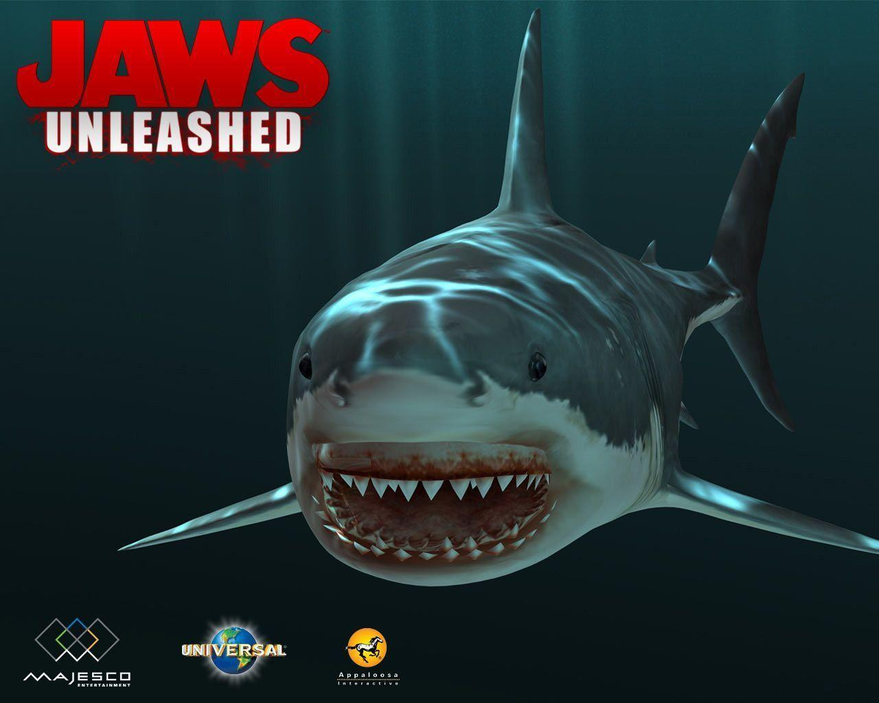 jaws wallpapers wallpaper cave