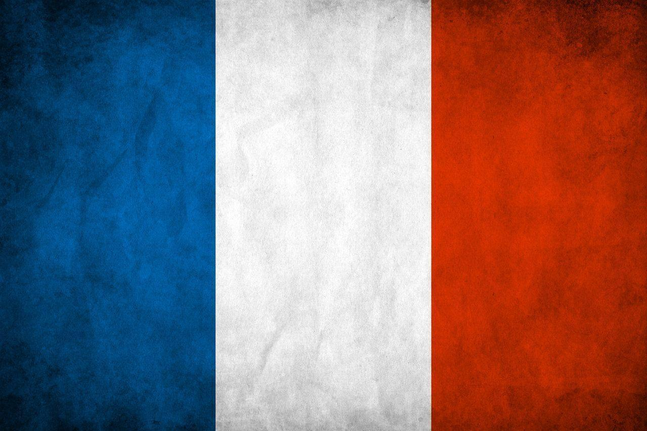 France Flag by think0